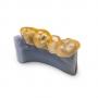 biokompatibilny-zuby-2